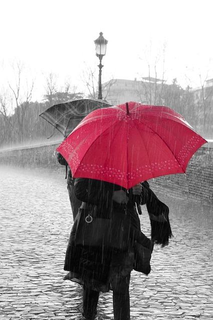 cityumbrella