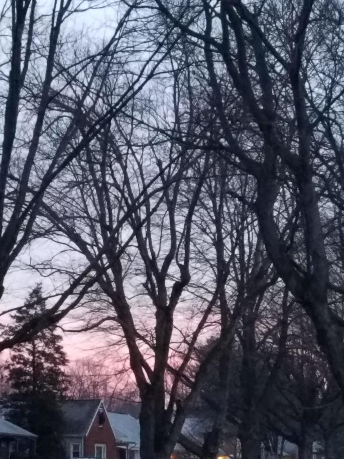pinkmorning