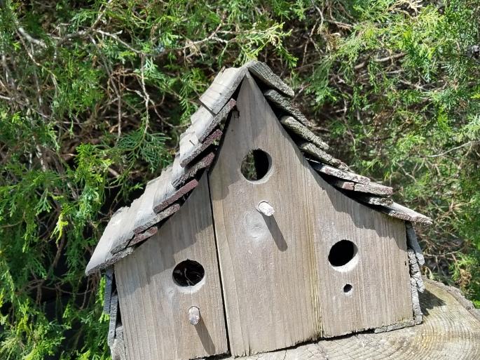 flatbirdhouse
