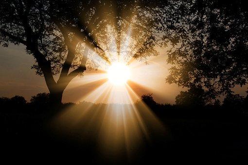 sunmornlight